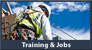 Training and Jobs